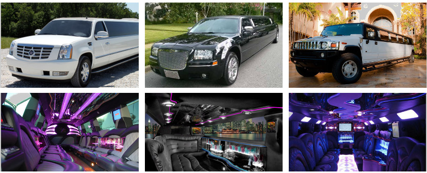 cheap tampa limo service