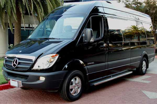 12 Passenger sprinter bus Lutz