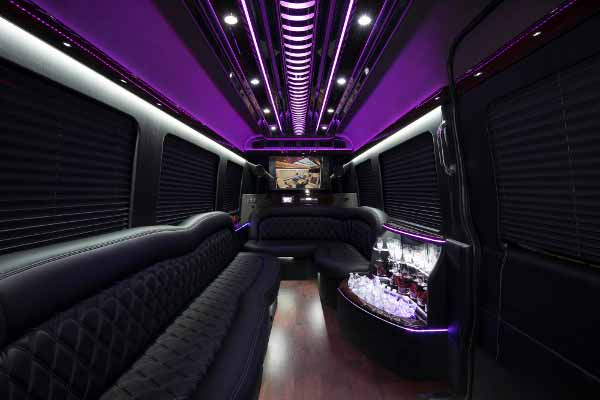 12 Passenger sprinter bus rental Brandon
