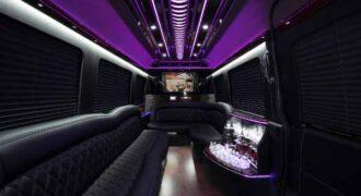 12 Passenger sprinter bus rental Dunedin