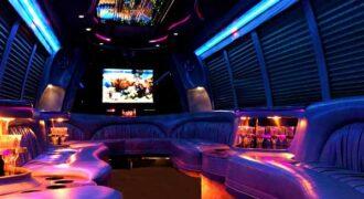 18 passenger party bus rentals Brandon