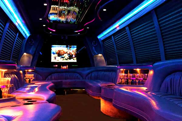 18 passenger party bus rentals Brandon