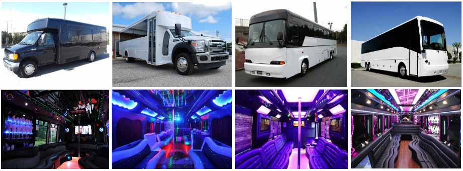 Tampa Party buses Wedding