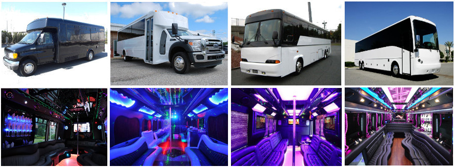 Tampa Party buses bachelor party