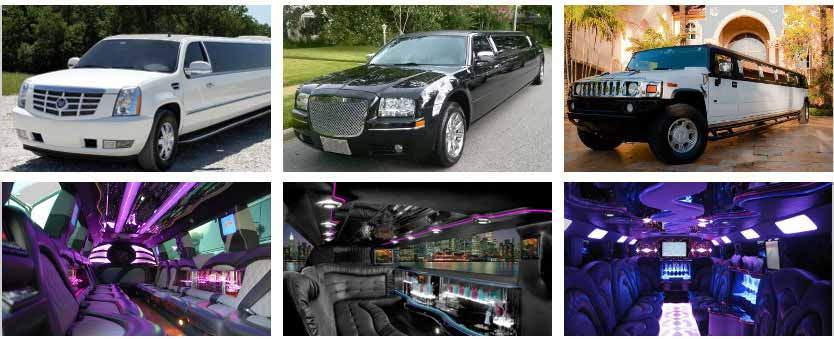 Wedding Party Bus Rental Tampa