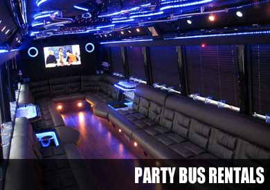 Wedding Party Bus in Tampa