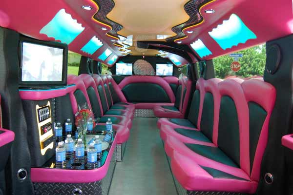 pink hummer limousine Plant City